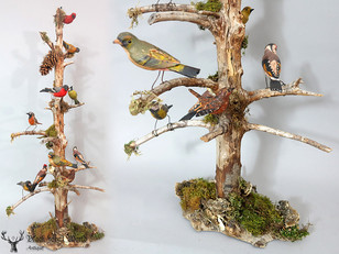 Awesome fine detailed Bird Stand