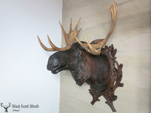 Black forest carved Moose head